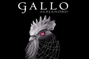 Gallo Tinto Barrica